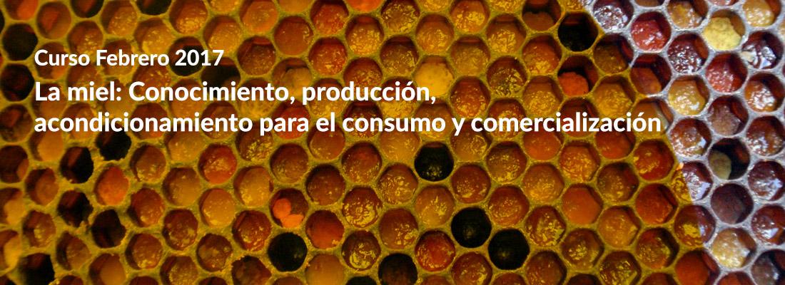 La miel conocimiento produccion curso pajuelo apicultura