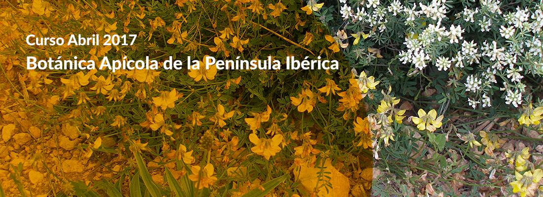 Botánica Apícola de la Península Ibérica