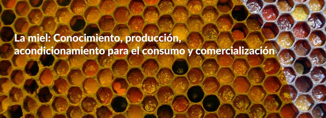 Curso La Miel: Conocimiento, producción, acondicionamiento para el consumo y comercialización
