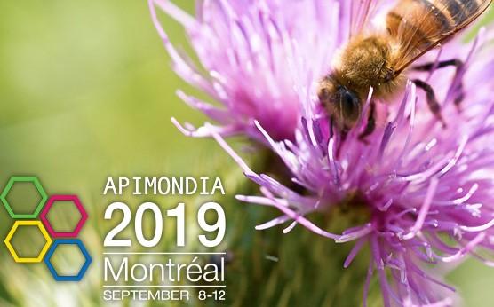 Congreso Internacional de Apicultura APIMONDIA 2019